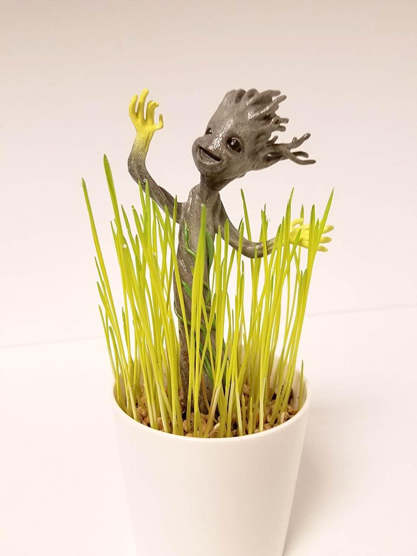 Glowing Groot Plant
