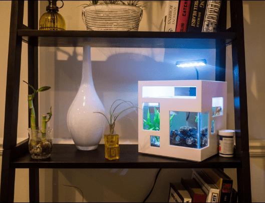 Stackable Mini Aquarium