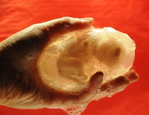 Fetus Soap