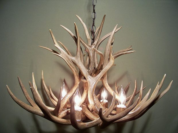 Real antler chandelier things i desire real antler chandelier mozeypictures Gallery