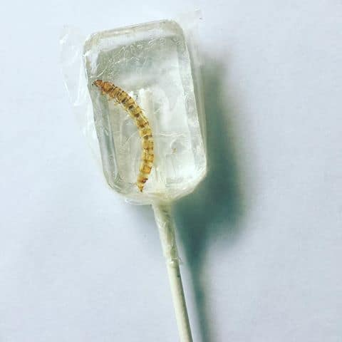 Tequila Flavored Worm Lollipop