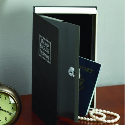 Dictionary Diversion Book Safe
