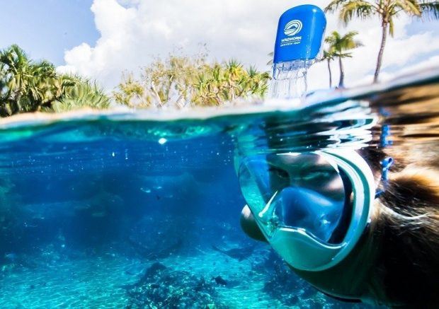 WildHorn Outfitters Seaview 180° Snorkel Mask
