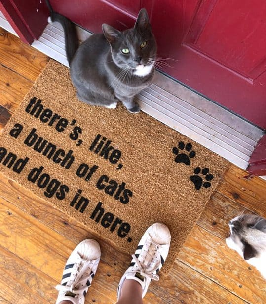 Bunch of Cats and Dogs Doormat