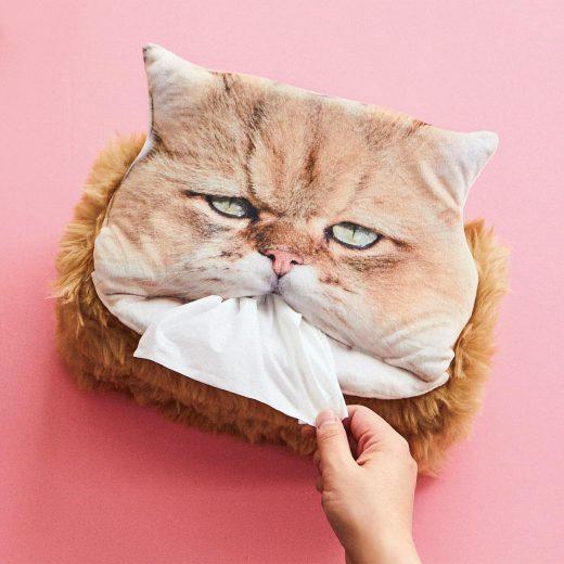Grandpa-Like Cat Tissue Holder