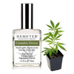 Cannabis Perfume