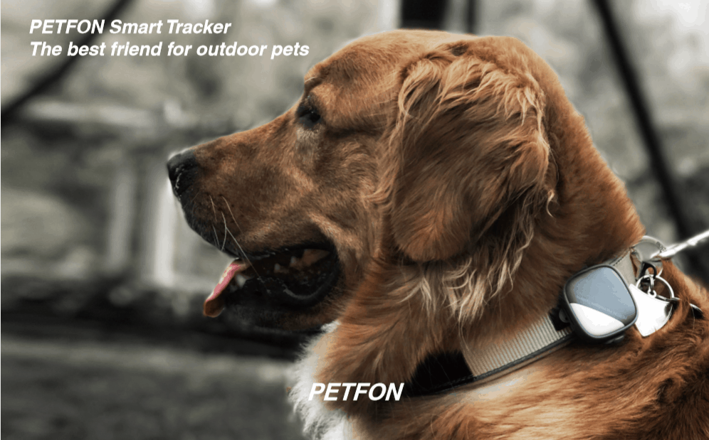 The PetFon Real-Time GPS tracker